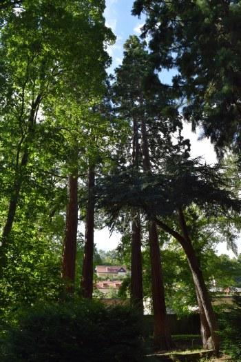 Botanická záhrada v Banskej Štiavnici